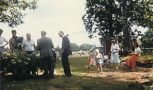 Midsommar 1982
